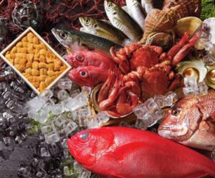 魚介類・肉類