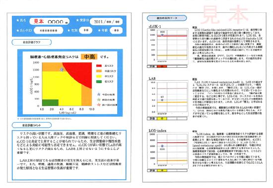 LOX-index結果報告書(サンプル)